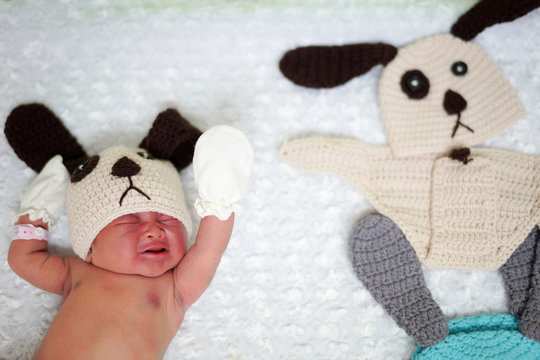 A newborn baby wearing a dog costume to celebrate the New Year of the Dog is pictured at the nursery room of Paolo Chockchai 4 Hospital in Bangkok