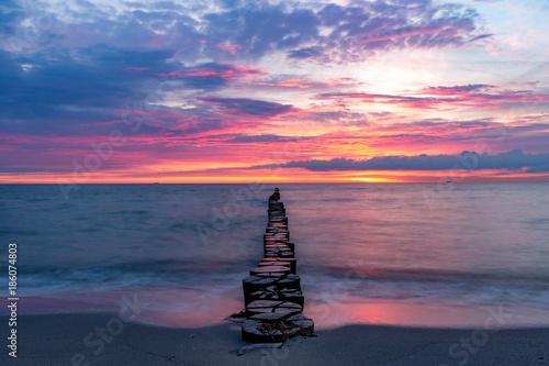 Bune am Ostseestrand im Sonnenuntergang