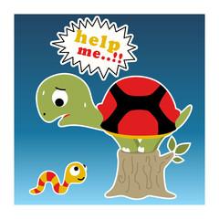 funny little turtle cartoon
