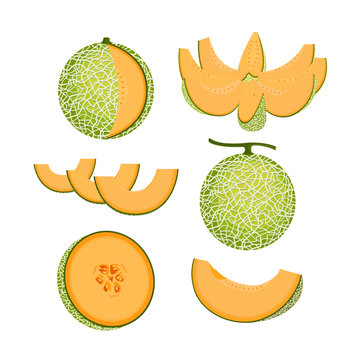 Orange Melon Fruit Isolated Vector and Icon