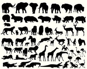 Collection of different animals on a white background
