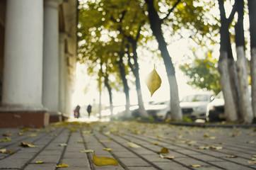 Herbst in der Innenstadt