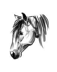 Vector ink sketch head horse