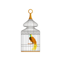 Colorful bird with long feathers sitting in antique metallic cage. Concept of domestic pet. Flat vector design element for infographic about keeping pets at home