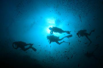 Scuba dive. Diving in ocean. Scuba divers explore coral reef