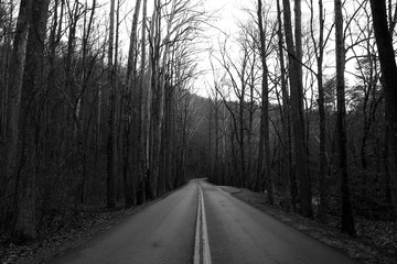 Black and White Street Photography of a Highway Through the Great Smoky Mountains.