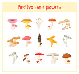 Cartoon Vector Illustration of Finding Two Exactly the Same Pictures Educational Activity for Preschool Children with mushrooms