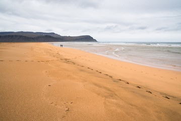 Landscape view of a sandy beach in Iceland with mountains in the distance.