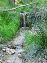 Naturaleza en Pitarque, Teruel (Aragon,España) situado en la comarca del Maestrazgo, al pie de la montaña de Peñarrubia
