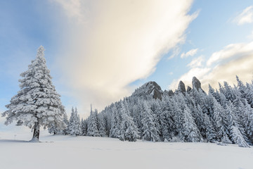Rarau Mountains during winter covered in snow