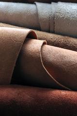 leather pelle koža עוֹר