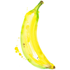 Exotic banana healthy food in a watercolor style isolated. Full name of the fruit: banana. Aquarelle wild fruit for background, texture, wrapper pattern or menu.