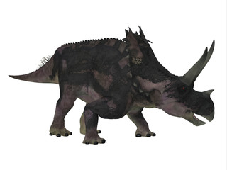 Agujaceratops Dinosaur Side Profile - Agujaceratops was a herbivorous ceratopsian dinosaur that lived in Texas, USA during the Cretaceous Period.