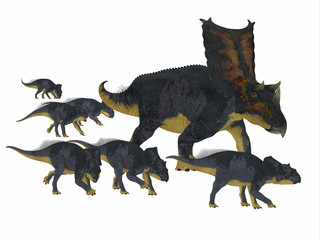 Chasmosaurus Dinosaur with Young - Chasmosaurus was a herbivorous ceratopsian dinosaur that lived in Alberta, Canada during the Cretaceous period.