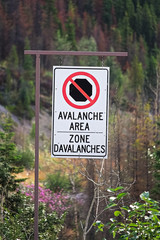 A no stopping avalanche area sign in english and french