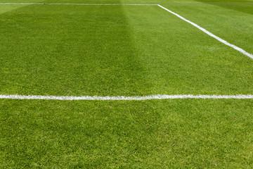 Corner of football field. green grass