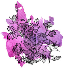 vector floral element at watercolor background