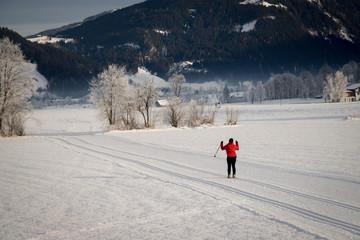 Langläufer in der Abendsonne, Winterlandschaft