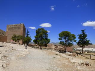Novelda,pueblo de España situado en la provincia de Alicante, en la comarca del Medio Vinalopó. Conocido por su producción de uva y el comercio de especias y mármol
