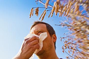 Allergie im Fühling