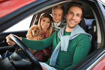 Young family with cute boy and dog in car
