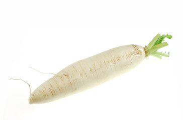Raw white radish isolated, on white background