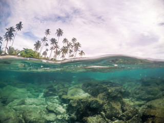 Keuken foto achterwand Oceanië Split view cross section of sea water and palm trees in Samoa, South Pacific Island. Rocks and fish underwater; cloudy sky above.