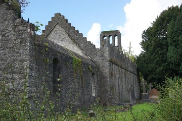 Ancient stone ruins of an Abbey outside Dublin, Ireland