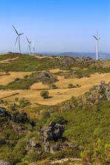 Wind power turbines farm in a green landscape
