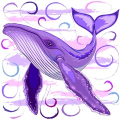 Door stickers Draw Humpback Whale on Purple and Pink