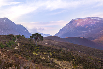 Lairig Ghru Mountain Pass in Cairngorms