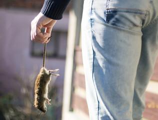 Man holding dead rat