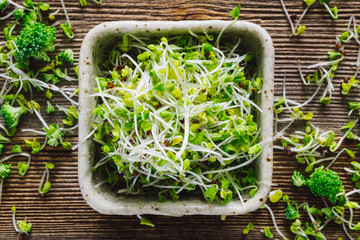 Mixed Sprouts and Broccoli