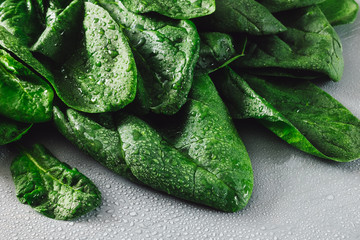Freshly Washed Spinach Leaves
