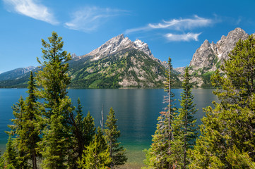 Wall Mural - Jenny Lake and Tetons