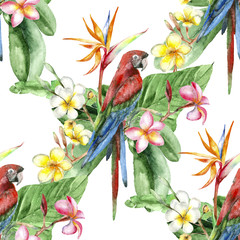 Ingelijste posters Papegaai Tropical watercolor pattern