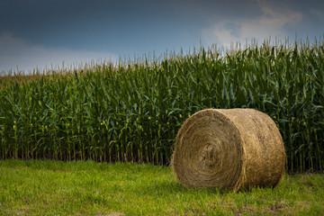 Hay Bail in cornfield in Boone County...Photo by Kyle Spradley | www.kspradleyphoto.com