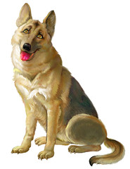 Illustration of cute sitting Shepherd on the white background. Illustration drawing on computer by graphic tablet.