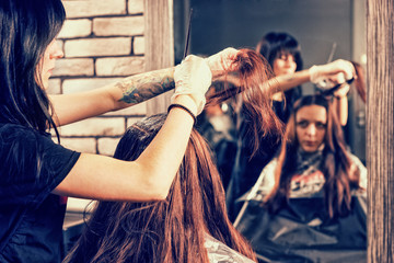 Beautiful female stylist holds in hand lock of brunette hair during process of dyeing hair of young woman