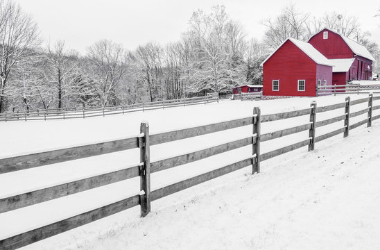 Lovely black and white, red farm scenery. Winter rural background