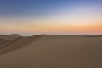The Solitude of the Desert