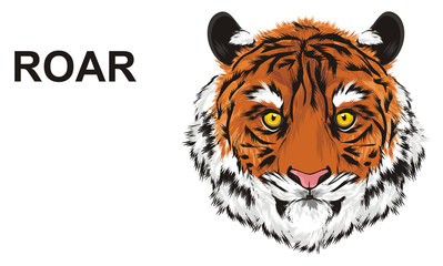 tiger, wild cat, cat, striped, animal, zoo, predator, claws, orange, roar, India, illustration, muzzle, word, letters, say, talking
