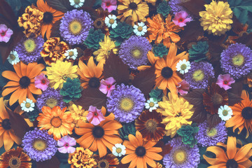 Floral background with vintage toning. Texture of the flowers.