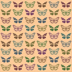 Multi colored butterflies