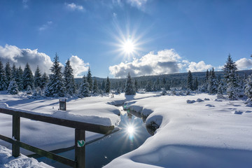 Foto op Aluminium Reflectie Winter mountain landscape with stream and wooden bridge. Trees and the sun are reflected in the water. Izera Mountains, Czech Republic, Europe.