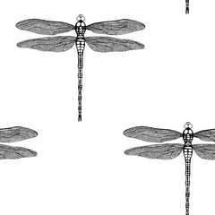 Vector seamless pattern from black hand drawing dragonfly on white background. Hand drawn damselfly