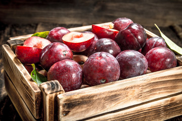 Fresh plums in a wooden box.