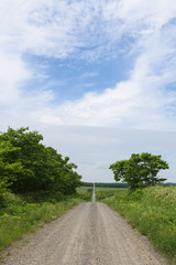 Gravel road through the countryside of the Kiritappu Wetlands, Hokkaido, Japan