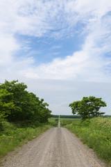 Gravel road through the countryside of the Kiritappu Wetlands, Hokkaido, Japan