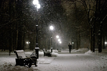 Beautiful snowy night park with benches at blizzard with lots of snowflakes in a night street light.